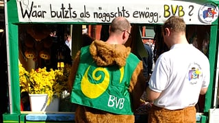 BVB ziehen Konsequenzen aus ihrer Krise