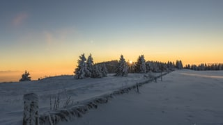 Ihre schönsten Winterbilder