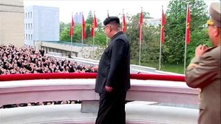 Nordkorea richtet gross an – die skurrile Parade in Bildern