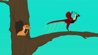 Video «Ralph und die Dinosaurier: Xiaotingia (24/26)» abspielen