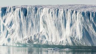 Bler memia chaud en l'Arctica