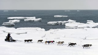 Temperaturas da record ad Alaska