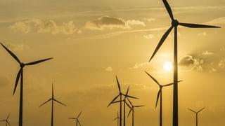 Klimawandel: «Alle wollen dabei sein – das ist die grosse Chance»