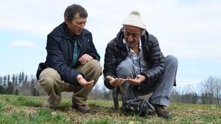 Fastenopfer unterstützt Kleinbauern