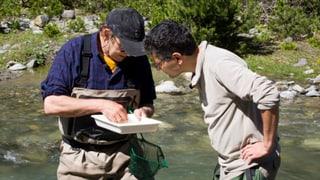 Nationalpark: Eine Wanderung mit Überraschungen (Artikel enthält Audio)