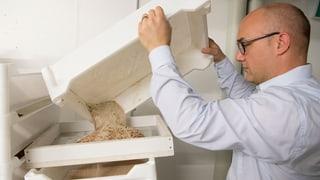Im Insekten-Business ist der Wurm drin (Artikel enthält Audio)