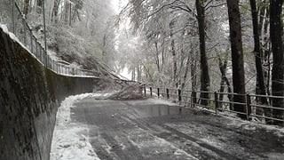Wintereinbruch führt zu Grosseinsatz