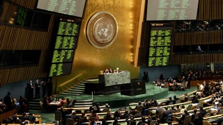 «Vertrag mit Zähnen»: UNO setzt Standards für Waffenhandel