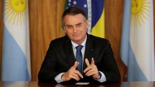 «Das Agrarministerium will möglichst viel Regenwald abholzen»