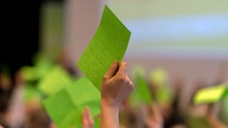 BDP und Grüne lehnen CVP-Familien-Initiative ab