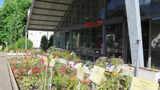 Ende der Gärtnerschule in Niederlenz?