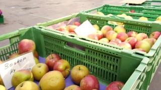 Äpfel helfen gesünder einkaufen