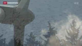 Neuer Radar rettet Vogelleben