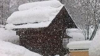 Schnee, ein weisses Wunderwerk