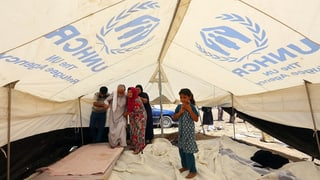 Irac: Organisaziuns d'agid averteschan da nov drama da fugitivs
