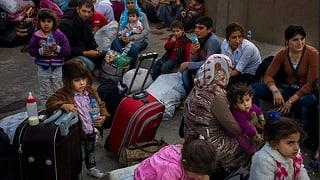 50 Millionen Menschen sind auf der Flucht - Zahlen und Fakten