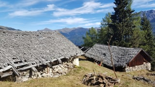 Alps emblidadas survegnan nova glischur