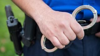 Sieben Verdächtige nach Hooligan-Schlägerei in Haft