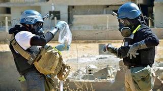 USA wollen syrische C-Waffen vernichten