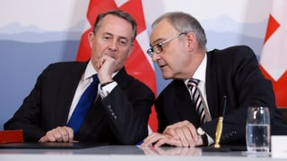 Schweiz-Grossbritannien – eine Achse mit Potenzial