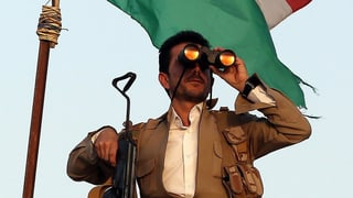 Türkei lässt kurdische Peschmerga-Kämpfer nach Syrien