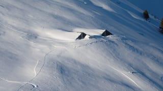 Mustér: Ina lavina ha destruì l'alp Lumpegna (Artitgel cuntegn galaria da maletgs)