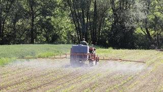 Glyphosat: Die Nr. 1 unter den Pestiziden soll Krebs verursachen