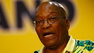 Wer wird Nachfolger von Jacob Zuma?