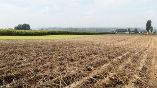 Bauernbudget 2015 bleibt umstritten