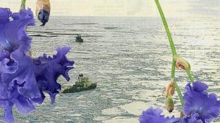 Silvie Defraouis Videokunst klingt, bewegt und erschreckt
