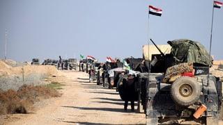 Einnahme von Ramadi könnte Irak politisch stabilisieren
