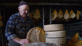 TTIP für Schweizer Bauern: Fluch oder Segen?