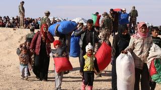 Far frunt a la miseria en Siria
