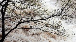 Die Hochwassersituation im Kanton Zürich bleibt angespannt