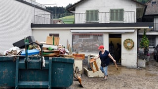 Danovamain ferms urizis en parts da la Svizra