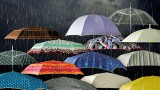 Schirme im Test: Diese lassen Sie nicht im Regen stehen