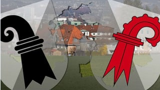 Kantonsfusion scheitert an Baselland (Artikel enthält Video)