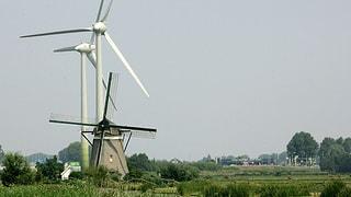 Ökostrom: Holländer ziehen Meereswind der Landbrise vor