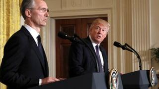 Trumps Haltung zur Nato ist eine Wundertüte