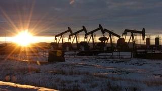 Rockefellers brechen mit der Ölindustrie