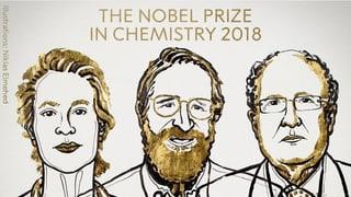 Premi Nobel da chemia per industria chemica verda
