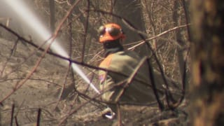 Waldbrand bei Faido noch nicht gelöscht