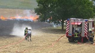 Kinder setzen mit Feuerwerk Feld in Brand