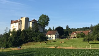 Gibt es doch noch eine Lösung für Schloss Wildenstein?