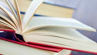 Literatur – «Starke Worte»
