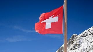 Dem Kitt der Schweiz auf der Spur