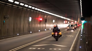 Die Steineggers und der Gotthard (Artikel enthält Video)