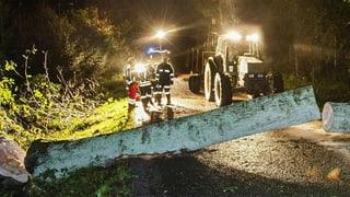 Sturmschäden: über 160 Meldungen allein im Kanton Bern