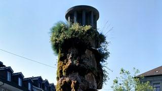 Der Oppenheim-Brunnen wird von Kalk und Moos befreit