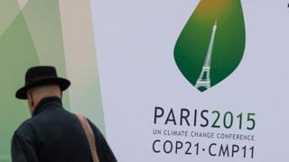 Umweltverbände zu Klimagipfel: Schweiz macht viel zu wenig
